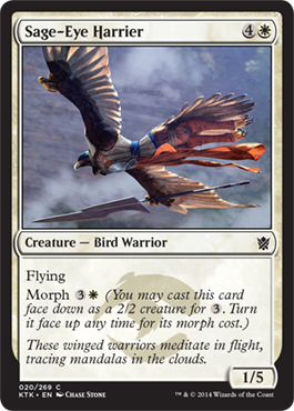 HOSTIGADORA SABIA / SAGE-EYE HARRIER (KHANS OF TARKIR)