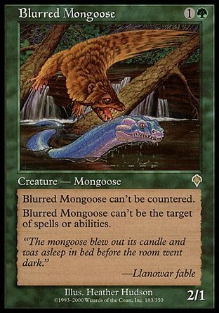 MANGOSTA BORROSA / BLURRED MONGOOSE (INVASION)