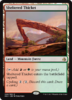 MATORRALES RESGUARDADOS / SHELTERED THICKET (AMONKHET)