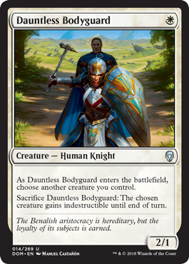 GUARDAESPALDAS INTREPIDA / DAUNTLESS BODYGUARD (DOMINARIA)