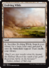 TERRENOS EXPANSIVOS / EVOLVING WILDS (AMONKHET)