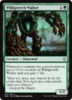 CAMINANTE ESPESURA / WILDGROWTH WALKER (IXALAN)