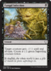 INFECCION FUNGICA / FUNGAL INFECTION (DOMINARIA)
